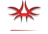 Logo of Click On Tours